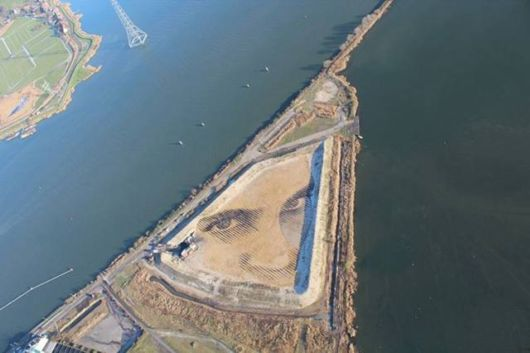 A Giant Portrait Visible From Bird's Eye