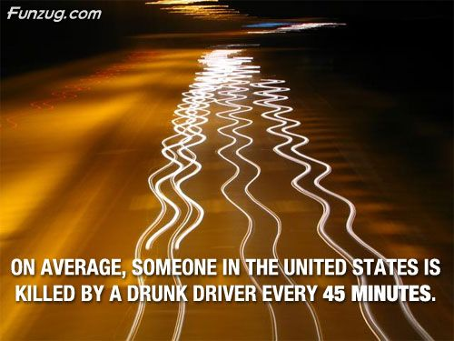 Amazing Facts That Are Absolutely True