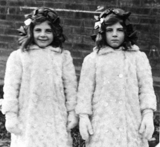 The 20 Interesting Facts About Twins
