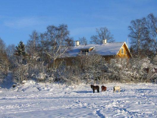 The Harsh Winter Season