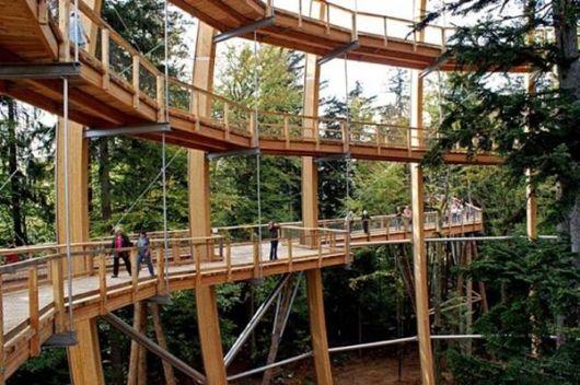 Worlds Longest Tree Top Walk