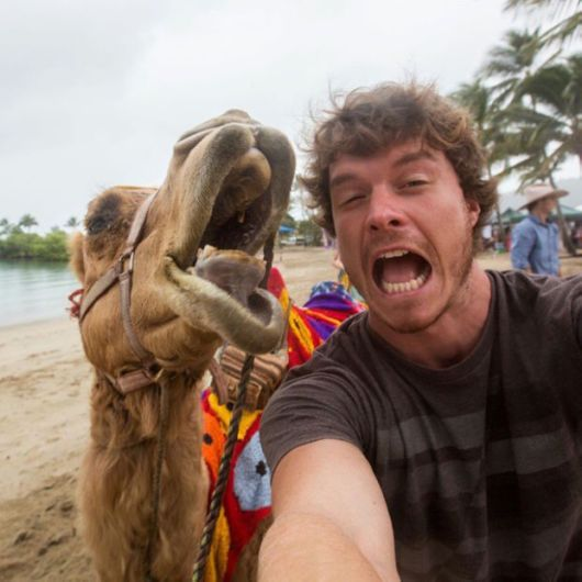 This Guy Takes The Best Animal Selfies Ever